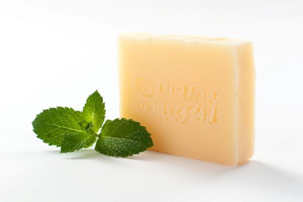 Shampoo-Seife für trockenes und sprödes Haar